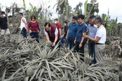 DA Recovery Efforts in Batangas and Cavite